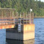 DPW Update on E. coli in Burlington's Drinking Water